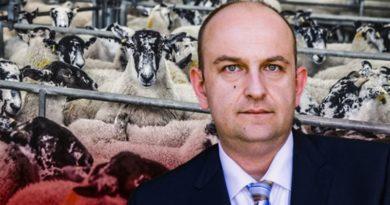 Der Tierschutz darf nicht einer falsch verstandenen Toleranz geopfert werden