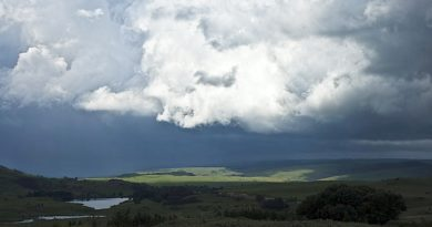 """Klimaneutrales"" Görlitz? Forschung: Ja! Unrealistische Utopien: Nein!"