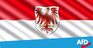 AfD-Brandenburg plus 11,3 Prozent! Fraktionsstärke fast verdoppelt!