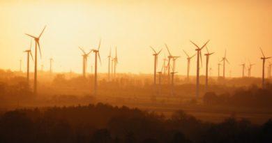 Wer, wie Greenpeace, Natur dem Klima opfert, hat von Umwelt nichts verstanden