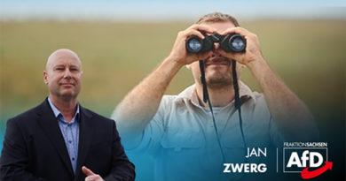 Verfassungsschutz-Chef soll gehen – erneute politische Instrumentalisierung?