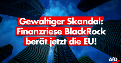 Korruption? Von der Leyen holt Finanzinvestor BlackRock als Berater in die EU-Kommission