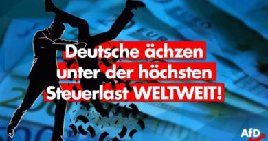 OECD: Keiner wird so vom Staat geschröpft, wie die Deutschen