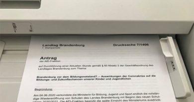 AfD wirkt im Landtag Brandenburg: SPD-Kopierer laufen auf Hochtouren