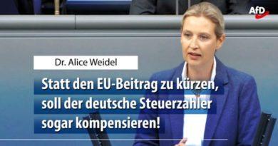 Bundesregierung nimmt hin, wie die EU deutsche Steuerzahler zur Kasse bittet