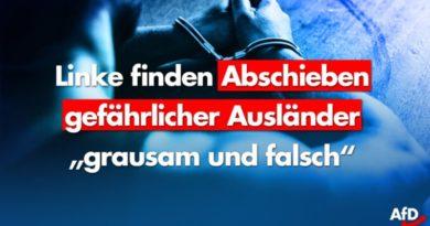 Linke bettelt: Gefährliche Ausländer nicht ausweisen!