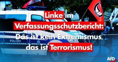 Linke im Verfassungsschutzbericht: Das ist kein Extremismus, das ist Terrorismus.