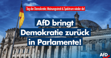 Tag der Demokratie: Die AfD stärkt demokratische Werte!